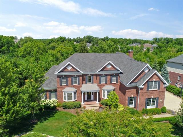 17554 Crestbrook Drive, Northville Twp, MI 48168 (#218067161) :: Duneske Real Estate Advisors