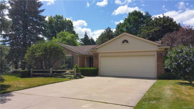 230 Tanglewood Drive, Rochester Hills, MI 48309 (#218067273) :: RE/MAX Vision