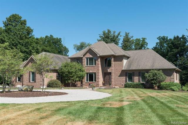 4580 Williamsburg On The River Road, Lodi, MI 48176 (#543258727) :: The Buckley Jolley Real Estate Team