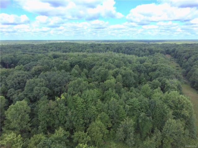 0000 Millville Road, Oregon Twp, MI 48446 (#218067454) :: RE/MAX Nexus