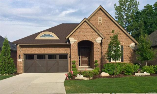 58871 Valley View Drive, Washington Twp, MI 48094 (#218067563) :: Duneske Real Estate Advisors