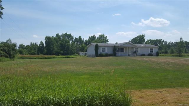 13525 Imlay City Road, Capac Vlg, MI 48014 (#218067621) :: RE/MAX Vision