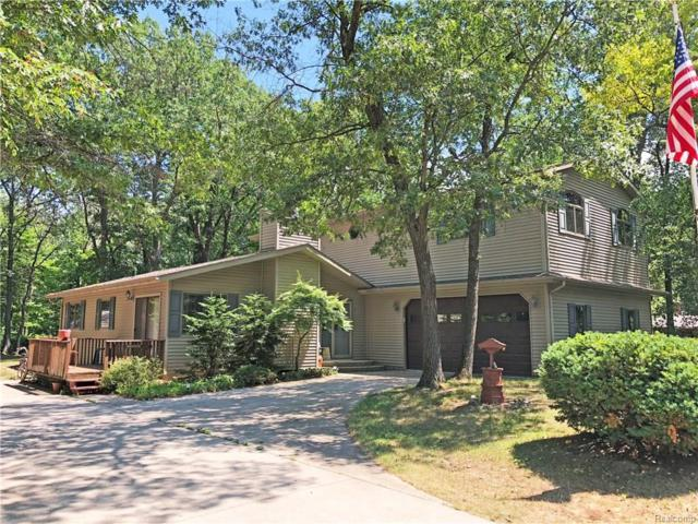 6694 Blake Drive, Lake Twp, MI 48725 (#218067760) :: Duneske Real Estate Advisors
