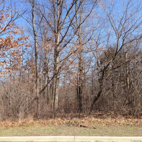 00 Collier Road, Auburn Hills, MI 48321 (#218067766) :: The Buckley Jolley Real Estate Team