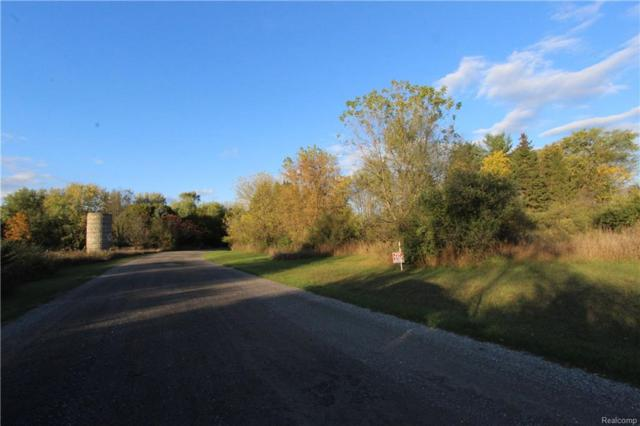 Lot A-2 Genesis Drive, Oceola Twp, MI 48855 (#218067793) :: Duneske Real Estate Advisors