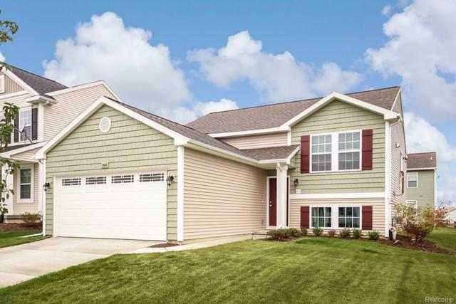 3216 Hill Hollow Lane, Howell Twp, MI 48855 (MLS #218068519) :: The Toth Team