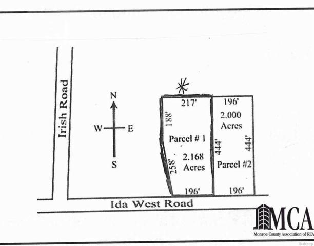 2 Ida West Road, Ida, MI 48140 (#57003452966) :: RE/MAX Nexus