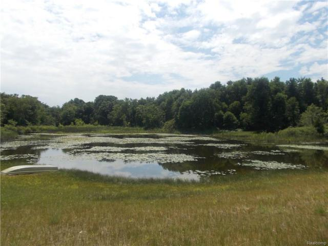 00 Vacant Land Norway Lake Road, Mayfield Twp, MI 48461 (#218068849) :: The Buckley Jolley Real Estate Team
