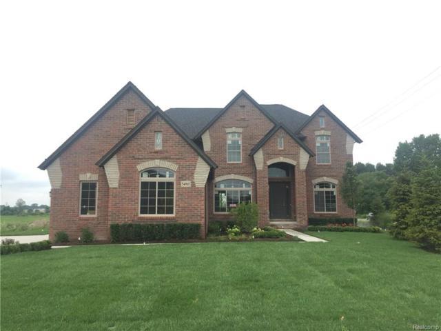 54965 Black Hills Lane, Shelby Twp, MI 48316 (#218068930) :: The Buckley Jolley Real Estate Team