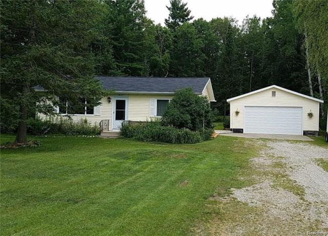 7869 Silsby, SOUTH BRANCH TWP, MI 48653 (#50100003262) :: RE/MAX Classic