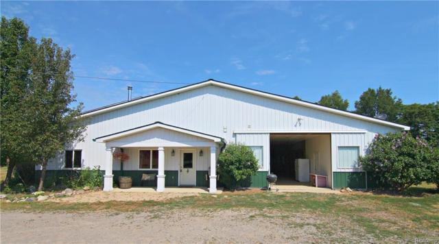 3996 N Tipsico Lake Road, Highland Twp, MI 48357 (#218070324) :: The Buckley Jolley Real Estate Team