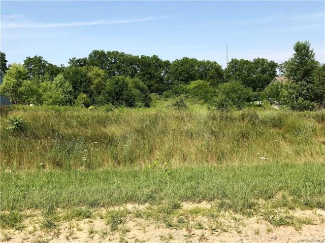00 Des Jardin Lane Parcel 4, Oceola Twp, MI 48855 (#218070705) :: RE/MAX Nexus