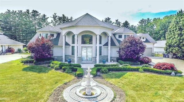37917 Saddle Lane, Clinton Twp, MI 48036 (#58031355097) :: Duneske Real Estate Advisors