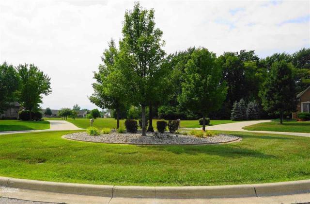 205 Golfview Ct, Saint Clair Twp, MI 48079 (#58031355108) :: Duneske Real Estate Advisors