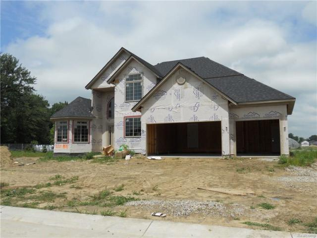 21951 Rivanna, Macomb Twp, MI 48044 (#218071600) :: The Buckley Jolley Real Estate Team
