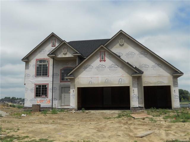 22047 Rivanna Drive, Macomb Twp, MI 48044 (#218071625) :: The Buckley Jolley Real Estate Team