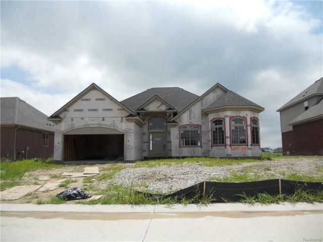 21964 Rio Grande Drive, Macomb Twp, MI 48044 (#218071640) :: The Buckley Jolley Real Estate Team