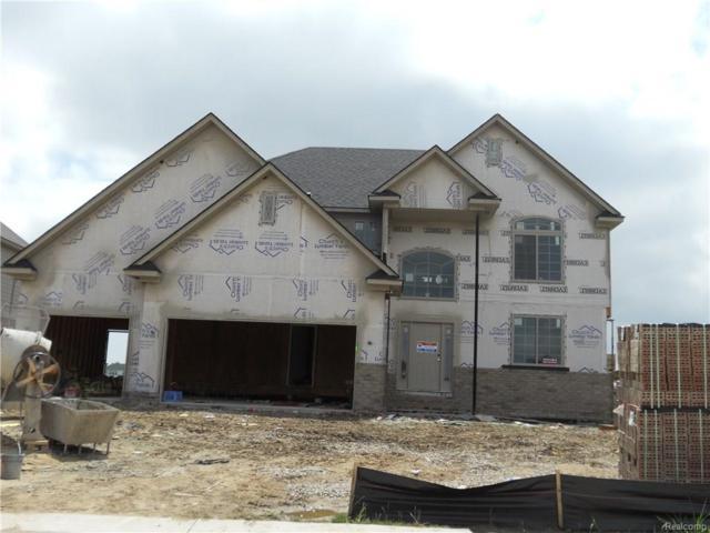 21932 Rio Grande Drive, Macomb Twp, MI 48044 (#218071646) :: The Buckley Jolley Real Estate Team