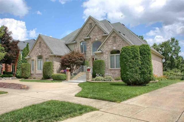 53682 Cherrywood Dr, Shelby Twp, MI 48315 (MLS #58031355163) :: The Toth Team