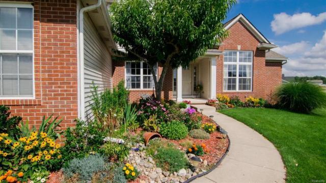 11252 Sand Hill Drive, Grass Lake Twp, MI 49240 (#543258953) :: RE/MAX Classic