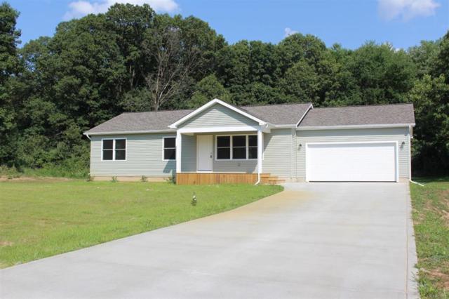 3015 Twin Meadows, Leoni Twp, MI 49201 (#543259027) :: The Buckley Jolley Real Estate Team