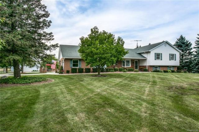 4555 Vincent Road, Clyde Twp, MI 48049 (MLS #218072297) :: The Toth Team