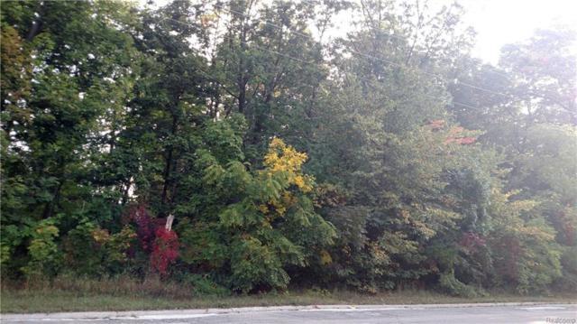 0 Nine Mile Road, Green Oak Twp, MI 48189 (#218073301) :: RE/MAX Classic