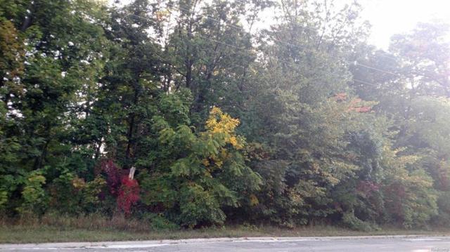 0 Nine Mile Road, Green Oak Twp, MI 48189 (#543259142) :: RE/MAX Classic