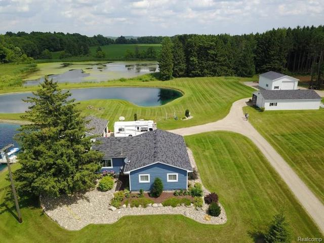 874 Mitchell Lake Road, Attica Twp, MI 48412 (#218074160) :: The Buckley Jolley Real Estate Team