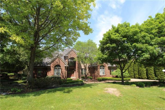 17385 Rolling Woods Circle, Northville Twp, MI 48168 (#218074372) :: RE/MAX Classic