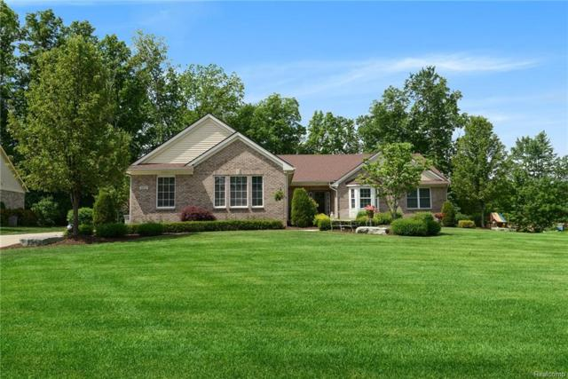 8664 Giovanni Court, Hartland Twp, MI 48855 (#218075051) :: The Buckley Jolley Real Estate Team