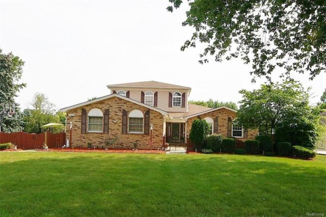 14623 Clinton River Road, Sterling Heights, MI 48313 (#218075420) :: The Buckley Jolley Real Estate Team