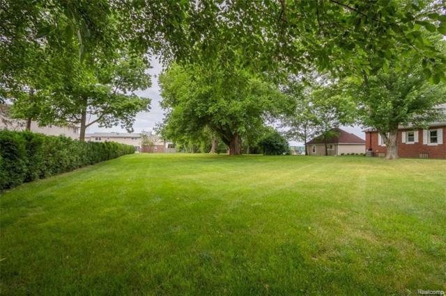 51050 W Huron River Drive, Van Buren Twp, MI 48111 (#218076057) :: Duneske Real Estate Advisors
