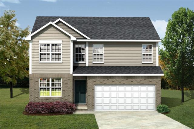 7679 Ryder, Shelby Twp, MI 48317 (#218076144) :: The Buckley Jolley Real Estate Team