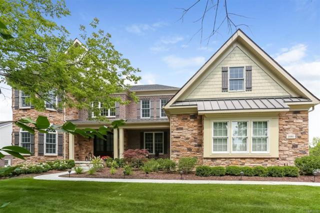 1880 Tapadera Drive, Lodi Twp, MI 48103 (#543259335) :: The Buckley Jolley Real Estate Team