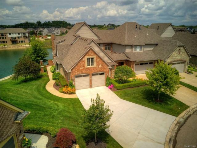 10721 Waterfall Court, Green Oak Twp, MI 48178 (#218076440) :: The Mulvihill Group