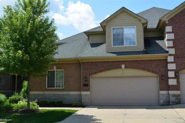 53155 Celtic Dr, Shelby Twp, MI 48315 (MLS #58031356628) :: The Toth Team