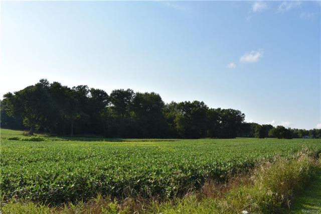 V/L Farnsworth Road, Mayfield Twp, MI 48446 (#218076957) :: Duneske Real Estate Advisors