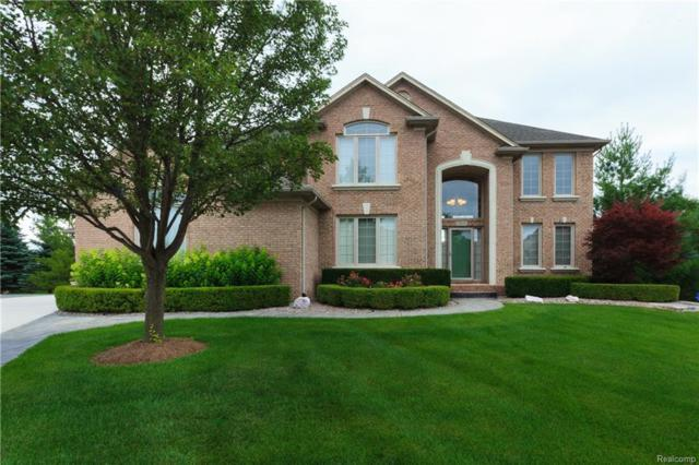 7215 Larch Court, Shelby Twp, MI 48316 (#218077037) :: RE/MAX Classic