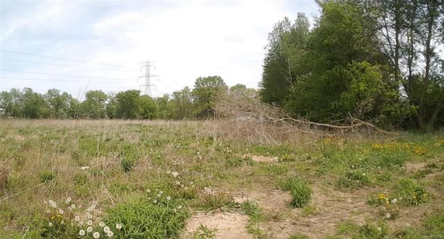 9440 Island Lake Road, Dexter, MI 48130 (#543259424) :: Duneske Real Estate Advisors