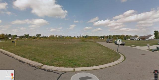 323 Kyles Pl, Lapeer, MI 48446 (#218077484) :: The Buckley Jolley Real Estate Team