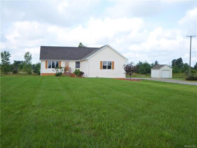819 Brown City Road, Imlay Twp, MI 48444 (#218077742) :: The Buckley Jolley Real Estate Team