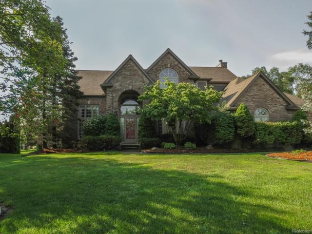 49361 Fox Drive North, Plymouth Twp, MI 48170 (#543259425) :: The Buckley Jolley Real Estate Team