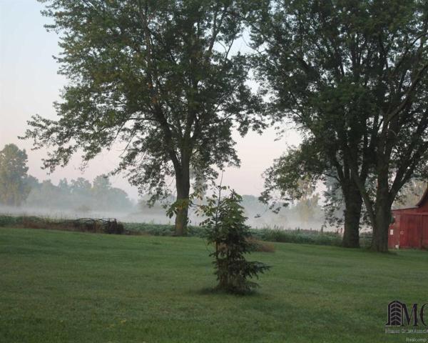 2903 S Otter Creek, Lasalle, MI 48145 (#57003453184) :: RE/MAX Nexus