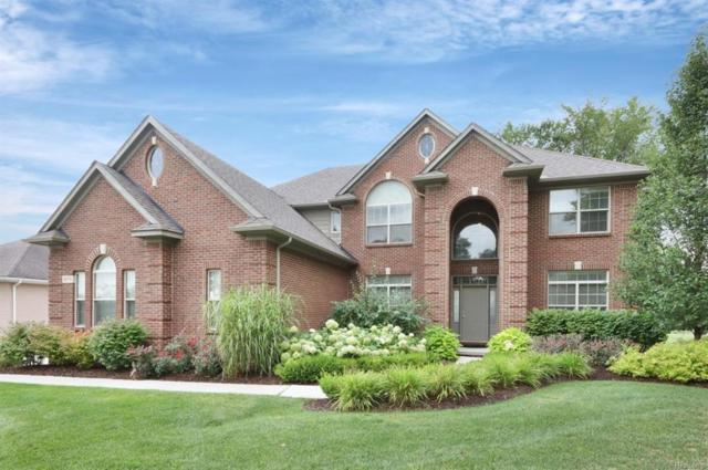 4876 Crooked Stick Court, Genoa Twp, MI 48116 (#543259488) :: The Buckley Jolley Real Estate Team