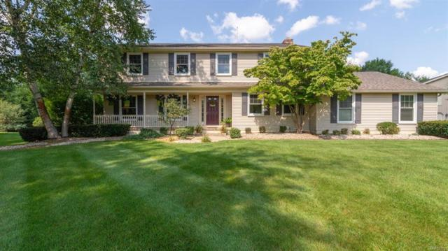 5636 Briar Meadow Court, Lodi, MI 48176 (#543259550) :: The Buckley Jolley Real Estate Team