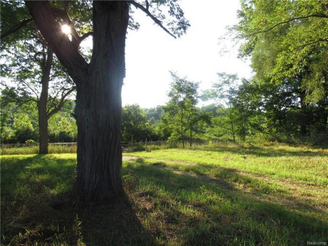 PARC 1 County Farm Road, Marion Twp, MI 48843 (#218079483) :: RE/MAX Classic