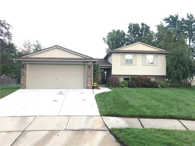 42603 Collingham Court, Canton Twp, MI 48187 (#218079752) :: RE/MAX Classic