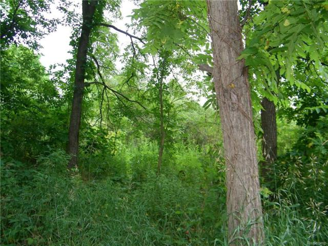 vacant Bohlman Road, Dryden Twp, MI 48428 (#218079754) :: RE/MAX Nexus