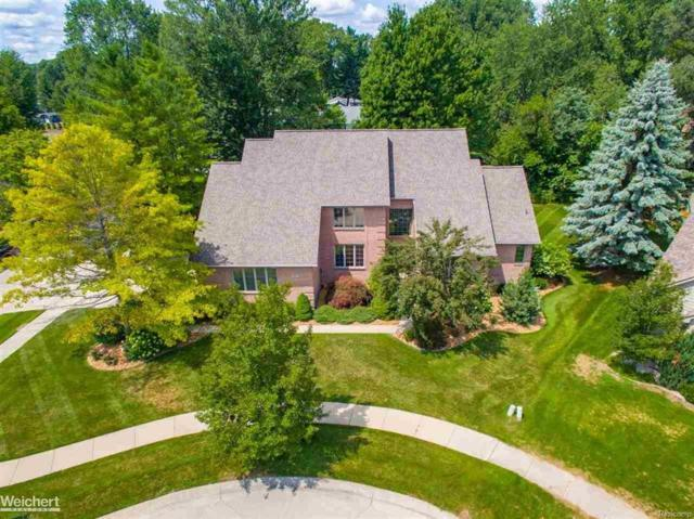 49177 Driftwood, Shelby Twp, MI 48317 (MLS #58031357350) :: The Toth Team